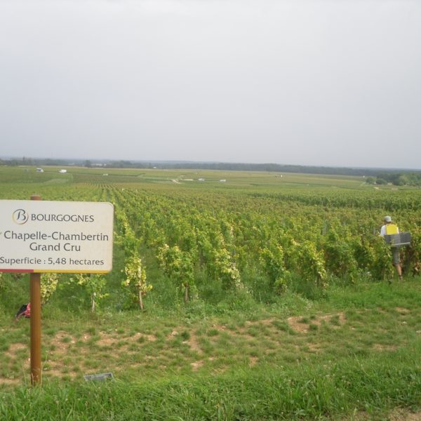 Domaine Cecile Tremblay